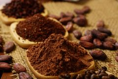 Cacao powder, cocoa nibs, and coffee beans on wooden plates on burlap royalty free stock photos