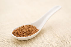 Cacao powder Royalty Free Stock Photography