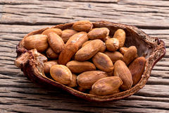 Cacao seeds from pot is ready to be made cacao powder setup on wooden background. Stock Photo