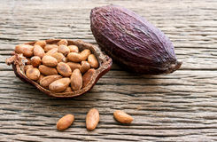 Cacao seeds from pot is ready to be made cacao powder setup on wooden background. Stock Image