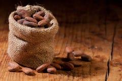 Cacao sin procesar fotografía de archivo libre de regalías