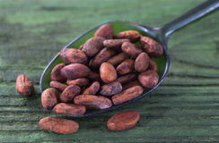 Cacao in of a spoon Royalty Free Stock Photo
