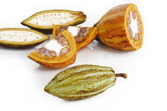 Cacao on white Royalty Free Stock Image