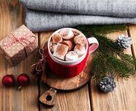Cacao y decoraciones de la Navidad Imagen de archivo libre de regalías