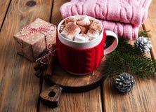 Cacao y decoraciones de la Navidad Foto de archivo libre de regalías
