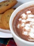 Cacao y galletas Fotos de archivo