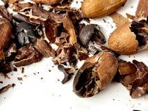 Cacaobonen en bonen stock foto