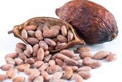 Cacaobonen en cacaofruit op wit Stock Foto's