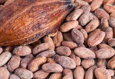 Cacaobonen en dichte omhooggaand van het cacaofruit Royalty-vrije Stock Foto