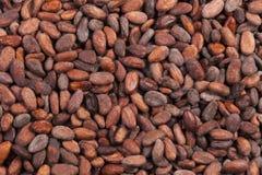 Cacaobonenachtergrond Stock Afbeelding