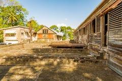 Cacaolandbouwbedrijf in Caraïbisch Grenada, Royalty-vrije Stock Afbeeldingen