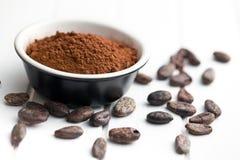 Cacaopoeder en cacaobonen Stock Afbeelding