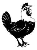 Cacareo del pollo del gallo Fotos de archivo libres de regalías