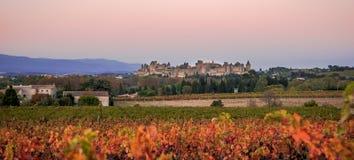 Cacassonne w ranku świetle Zdjęcie Royalty Free