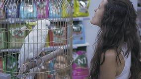 Cacatúa del loro en una jaula almacen de metraje de vídeo