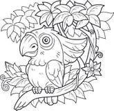 Cacatua del pappagallo che si siede su un ramo Fotografie Stock Libere da Diritti