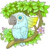 Cacatua del pappagallo che si siede su un ramo Immagine Stock Libera da Diritti