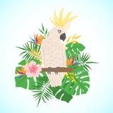 Cacatua sveglia del pappagallo su un fondo floreale royalty illustrazione gratis