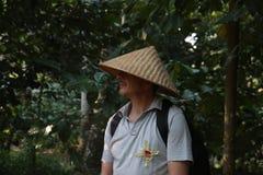 Cacau, café e plantação da especiaria na vila de Kalibaru em Java Indonesia do leste Foto de Stock