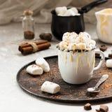 Cacau com leite condensado e pedaços de chocolate imagens de stock royalty free