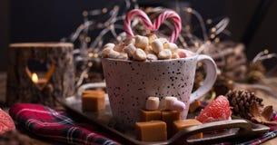 Cacau com marshmallows em uma caneca branca, cand diferente do Natal imagens de stock royalty free