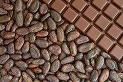Cacau e chocolate Imagem de Stock