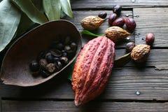 Cacau e nutmegg (Grenada) Fotografia de Stock Royalty Free