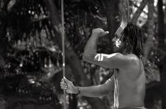 Caccia aborigena dell'uomo del guerriero di Yugambeh Fotografia Stock Libera da Diritti