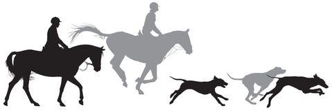 Caccia alla volpe, cacciatori sui cavalli e cani del foxhound illustrazione di stock