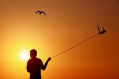 Caccia col falcone Immagini Stock Libere da Diritti