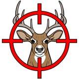 Caccia dei cervi Immagine Stock Libera da Diritti