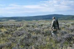 Caccia del coyote con i cani nel sud-ovest Wyoming fotografia stock libera da diritti