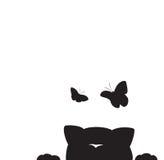 Caccia del gatto per le farfalle Fotografie Stock Libere da Diritti