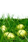 Caccia dell'uovo di Pasqua Immagini Stock Libere da Diritti