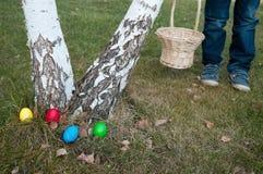Caccia delle uova di Pasqua Fotografia Stock Libera da Diritti