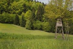 Caccia di hobby: torre di osservazione animale nella foresta Fotografie Stock Libere da Diritti