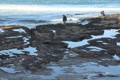 Caccia di tesoro della spiaggia-Un di Cronulla sulla riva fotografie stock