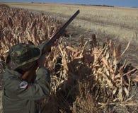 Cacciatore, fucile da caccia e campo immagini stock libere da diritti