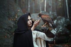 Cacciatrice incappucciata nera con il falco Fotografia Stock