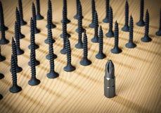 Cacciavite 'phillips' fra le viti Fotografia Stock Libera da Diritti