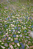 Caceres stones floor detail with grass Spain Royalty Free Stock Photo