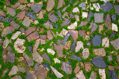 Caceres stones floor detail with grass Spain Stock Photo