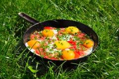 Cacerola con los huevos, las cebollas verdes y los tomates Foto de archivo libre de regalías