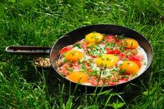 Cacerola con los huevos, las cebollas verdes y los tomates Fotos de archivo libres de regalías