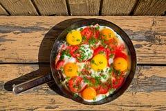 Cacerola con los huevos, las cebollas verdes y los tomates Imagen de archivo libre de regalías
