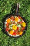 Cacerola con los huevos, las cebollas verdes y los tomates Imagenes de archivo