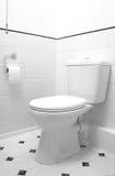 Cacerola del WC Foto de archivo libre de regalías