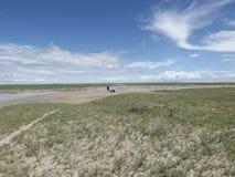 Cacerolas de Makgadikgadi Fotografía de archivo libre de regalías
