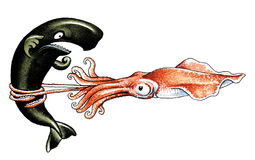 Cachalot and squid Royalty Free Stock Image