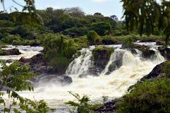 Cachamay, национальный парк, город Guayana Венесуэла стоковые изображения rf